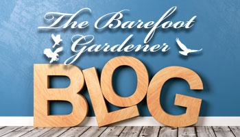 The Barefoot Gardener Blog